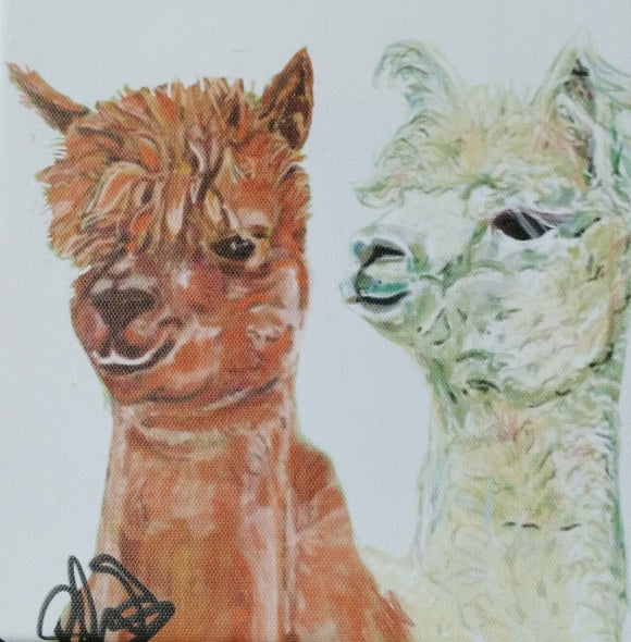 gifteasyonline - Alpaca Pair Canvas Print by Lisa WB - Lisa WB - Canvas