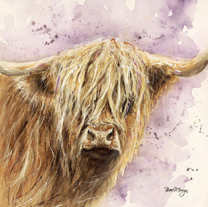 gifteasyonline - Box Canvas Print Archibald Highland Cattle 40cm x 40cm Boxed - Bree Merryn - Box Canvas