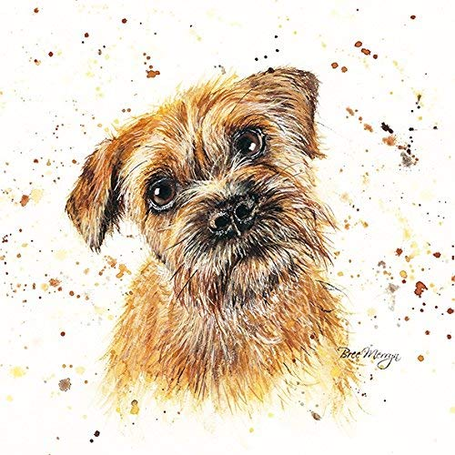 Bree Merryn Buddy Border Terrier Canvas Print