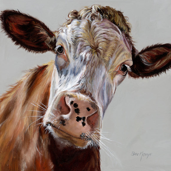 Bree Merryn  Box Canvas Print Colourful Delilah Cow 40cm x 40cm Boxed - Gifteasy Online