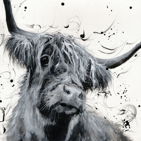 Bree Merryn  Box Canvas Print Dougal Highland Cattle 40cm x 40cm Boxed - Gifteasy Online