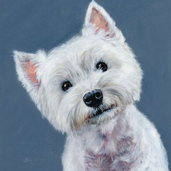 gifteasyonline - Box Canvas Print Finley Westhighland White Terrier 40cm x 40cm Boxed - Bree Merryn - Box Canvas