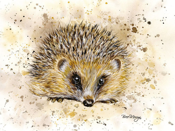 gifteasyonline - Canvas Cuties Harley hedgehog Canvas 15 x 20cm Boxed - Bree Merryn - Canvas Cuties
