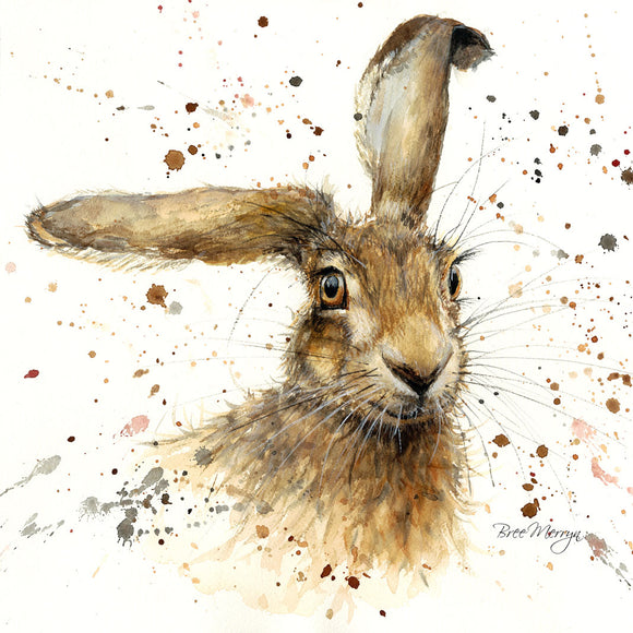 Box Canvas Print Harriet Hare 40cm x 40cm Boxed