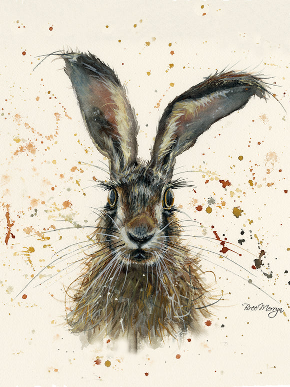 Canvas Cuties Hazel Hare Canvas 15 x 20cm Boxed