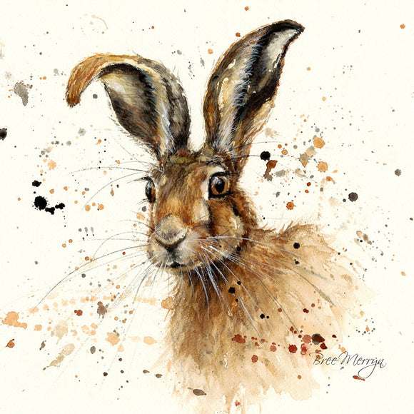 Box Canvas Print Hugh Hare 40cm x 40cm Boxed