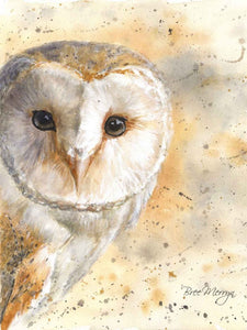 Canvas Cuties Olive Barn Owl Canvas 15 x 20cm