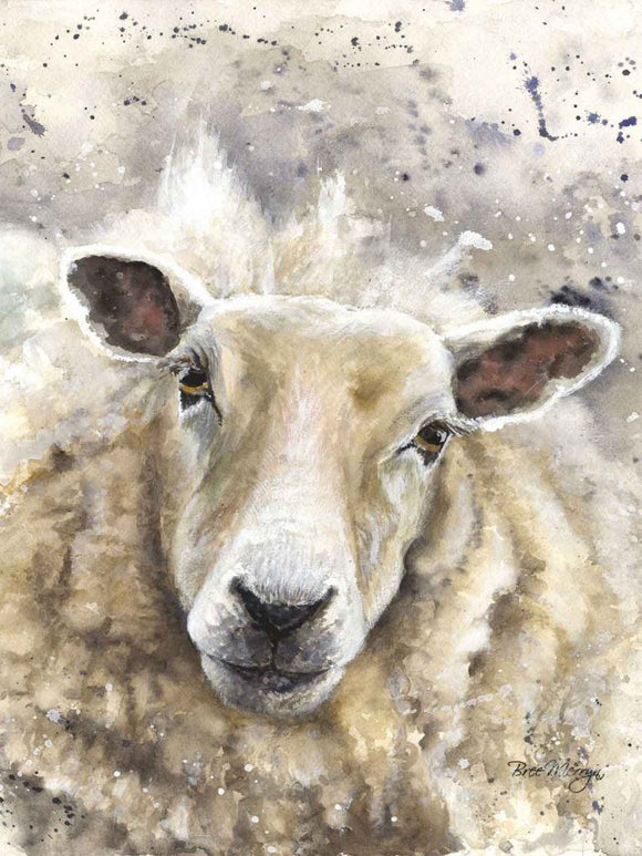 gifteasyonline - Canvas Cuties Sheila Sheep Canvas 15 x 20cm Boxed - Bree Merryn - Canvas Cuties