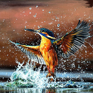 gifteasyonline - Bree Merryn King of the North kingfisher 40cm Canvas - Bree Merryn - Box Canvas