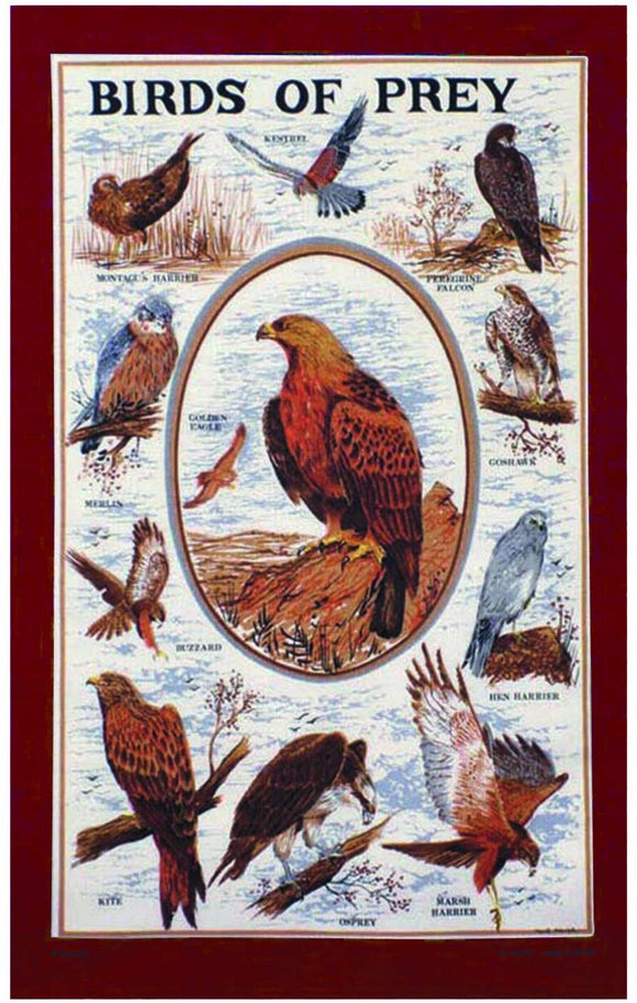 Stow Bird of Prey Tea Towel