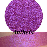 Antheia Pressed Duo Chrome Eyeshadow
