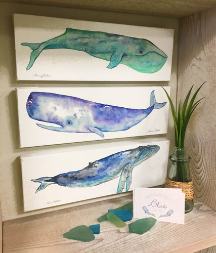 Original Whale Watercolors