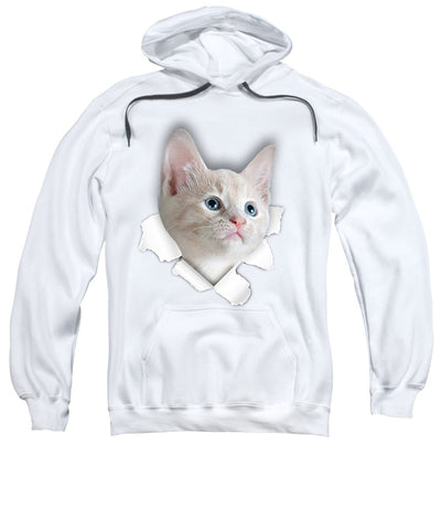 3D Cat Print Sweatshirt