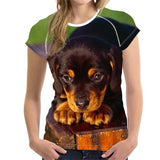 Dachshund Dog 3D Print Women T-Shirt