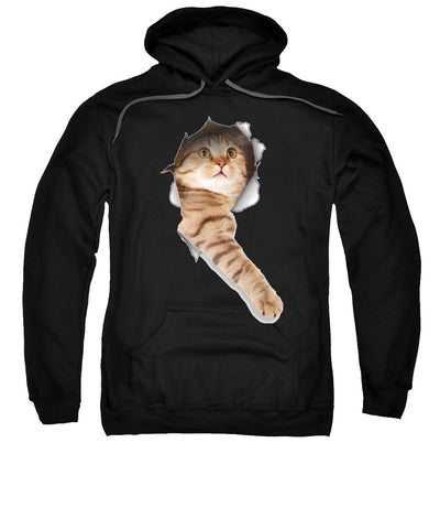 Beige Cat Paw Sticking Out 3D Print Sweatshirt