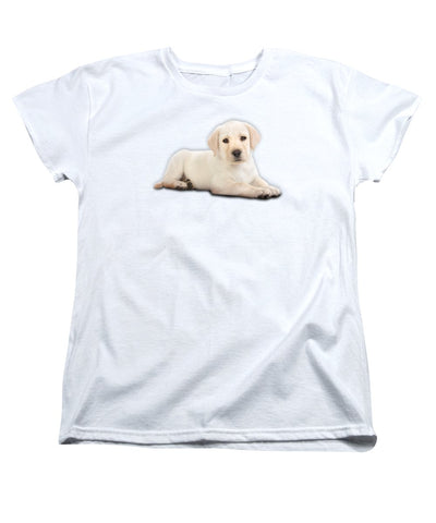 Innocent Dog Women's T-Shirt