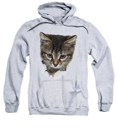 Naughty Cat 3D Print Sweatshirt