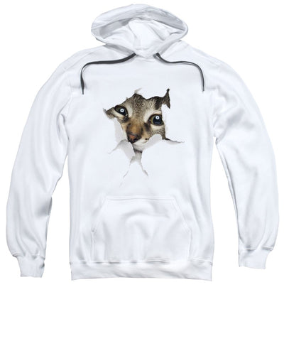 Naughty Cat Peeking Out 3D Print Sweatshirt