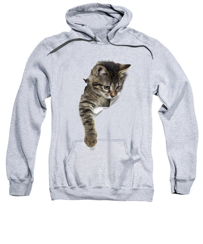 Naughty Cat Right Paw Sticking Out 3D Print Sweatshirt