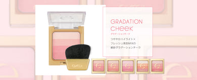 EXCEL Gradation Cheek N