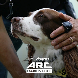 Dogtra ARC Hands Free Remote Dog Training Collar