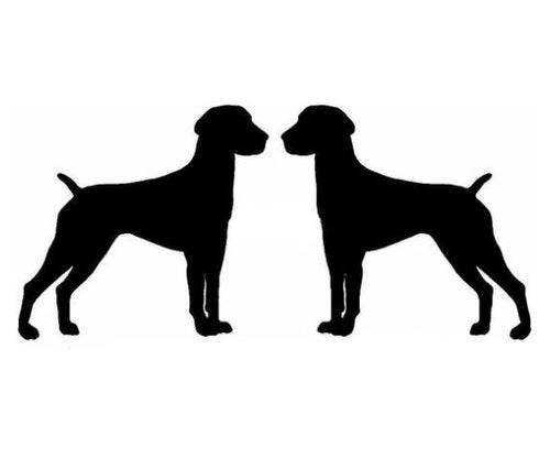 2 German Shorthaired Pointer Vinyl 2x3