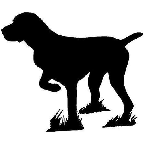 German Shorthaired Pointer Sticker 5x6