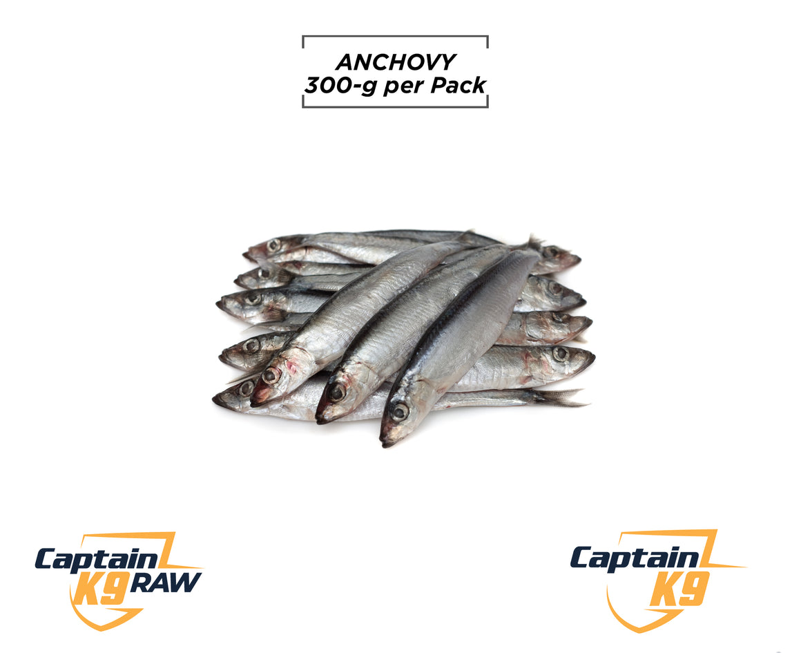 Anchovy - 300g Bag