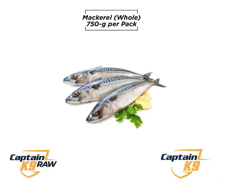Mackerel (Whole) - 750g Bag