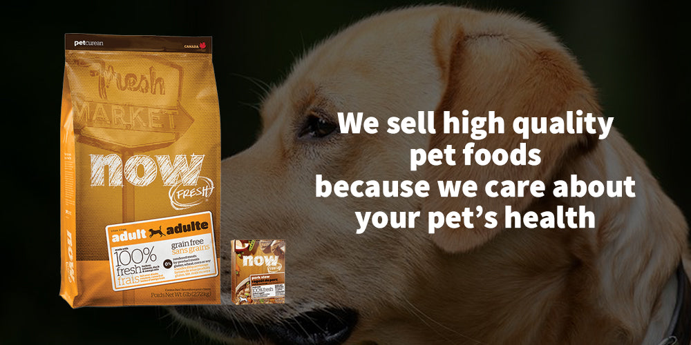 petcurean food banner