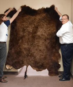 Buffalo Hide #1 Quality (149-1-G2860)