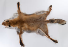 Red Fox Skin with Feet (G2513)