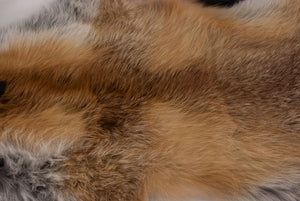 Red Fox Skin with Feet (G2515)