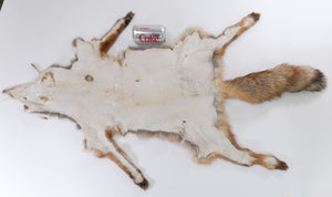 Red Fox Skin with Feet (G2517)
