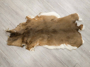 White Tail Deer Skin #1 Quality (39-01-G4303)