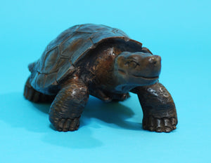 Large Galapagos Tortoise Wood Carving (G01)