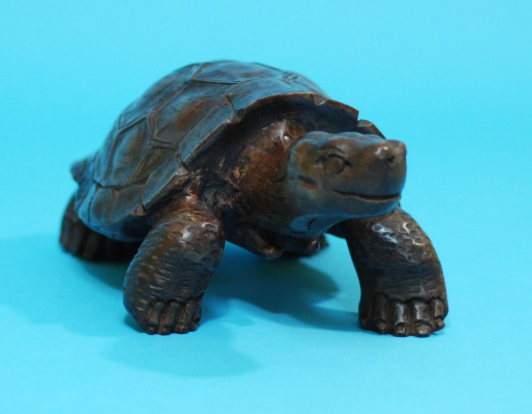 Large Galapagos Tortoise Wood Carving (1169-L-G01)