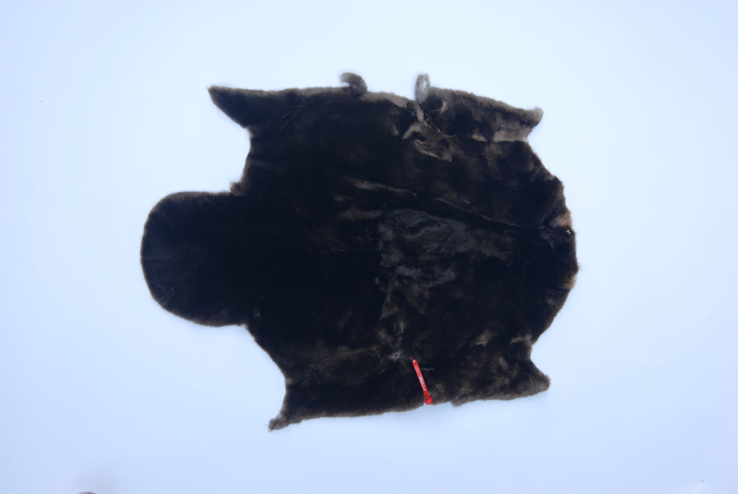 Craft Quality Sheared Beaver Skin: Select (G1214)