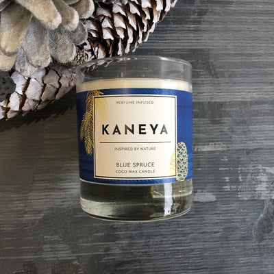 Blue Spruce Coco wax Candle