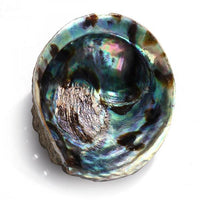 Abalone Smudge Bowl
