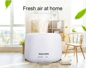 Remote Control 300ML Ultrasonic Humidifier