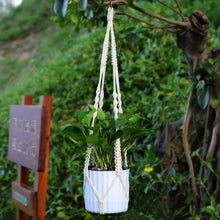 Load image into Gallery viewer, 3 Pieces Macrame Rural Plant Hanger