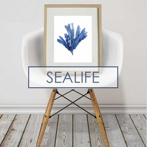 PRINTS - SEALIFE & NAUTICALS