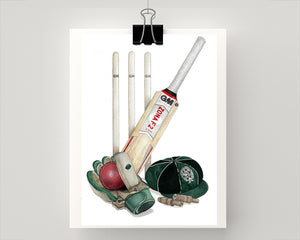 BBC College Cricket print