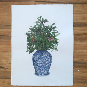 Original Watercolour Painting of Delft blue and white antique vase with olive leaf arrangement