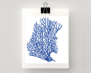 Print of seaweed /seafan in blue accents