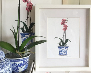 Original Watercolour of Pink Phalaenopsis Orchid In A Blue and White Pot