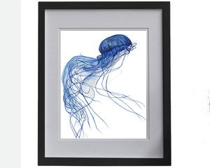 Print of a jellyfish in blue accents