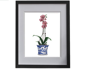 Print of a pink orchid in a blue and white pot