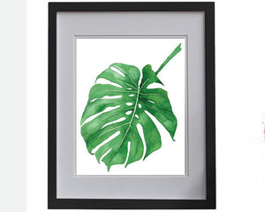 Print of a Philodendron plant